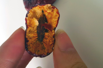 Superfood: getrocknete Jujube von Innen